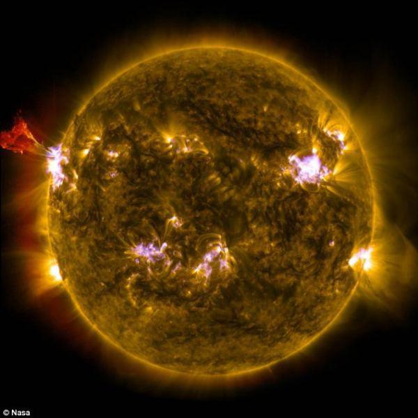 solar-whip-2