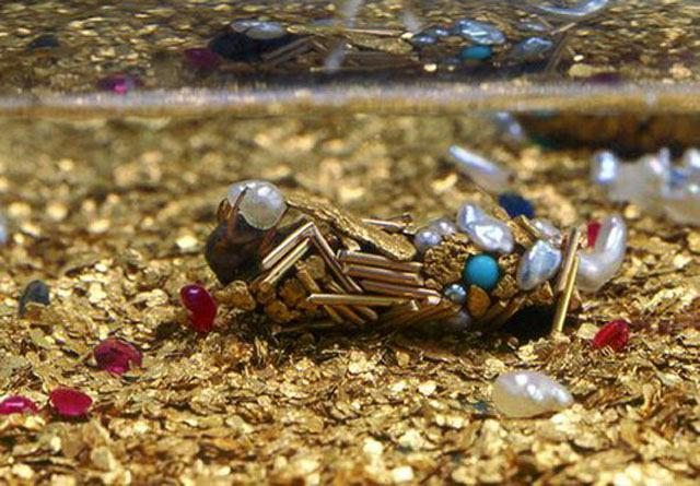 hubert-duprat-insect-larvae-caddisfly-jewelry-3.jpeg.492x0_q85_crop-smart