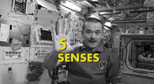 hadfield_senses