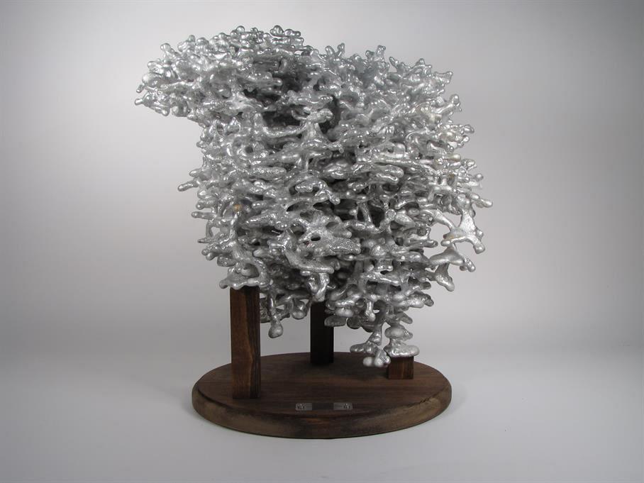 ant-nest-cast