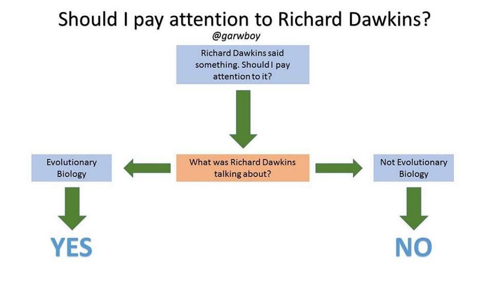 attention-dawkins