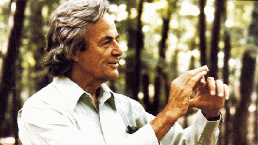 feynman-forest