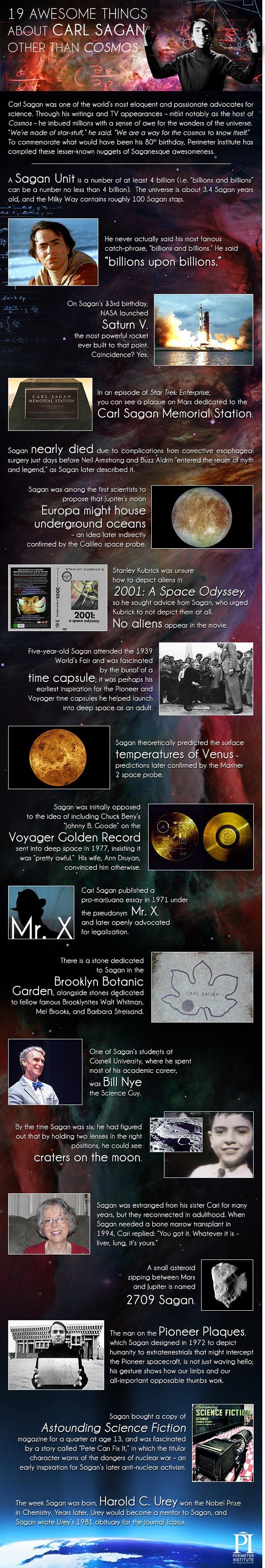 sagan-infographic